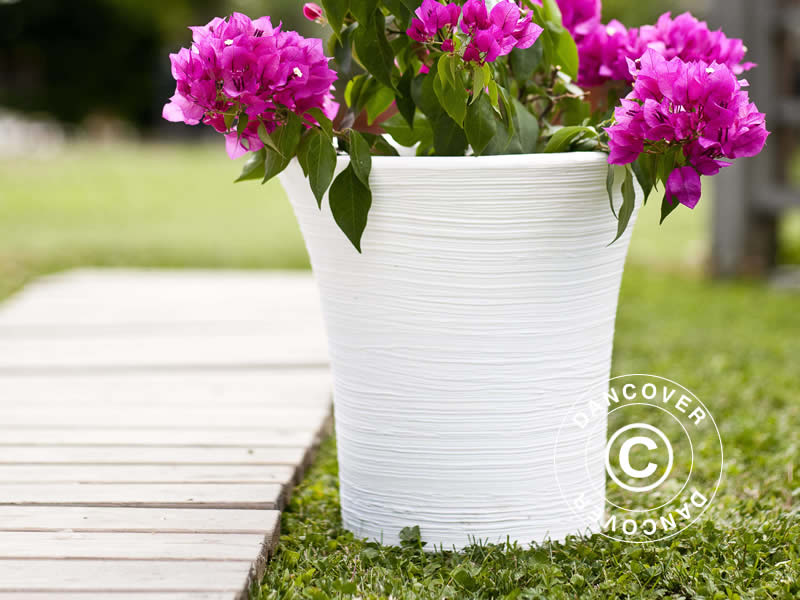 Fioriere Per Fiori ~ Le fioriere sono perfette per i vostri fiori estivi